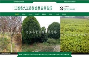 江西省九江县繁盛林业种苗场