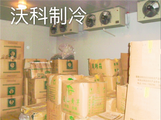 茶叶保鲜冷库安装建造