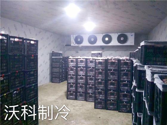 水果保鲜冷库安装建造