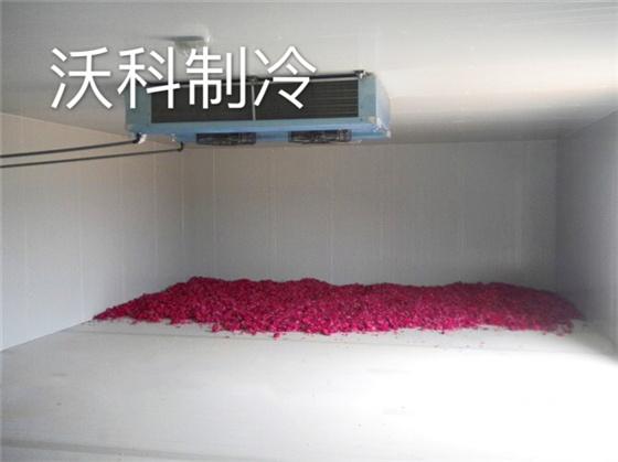 鲜花保鲜冷库建造